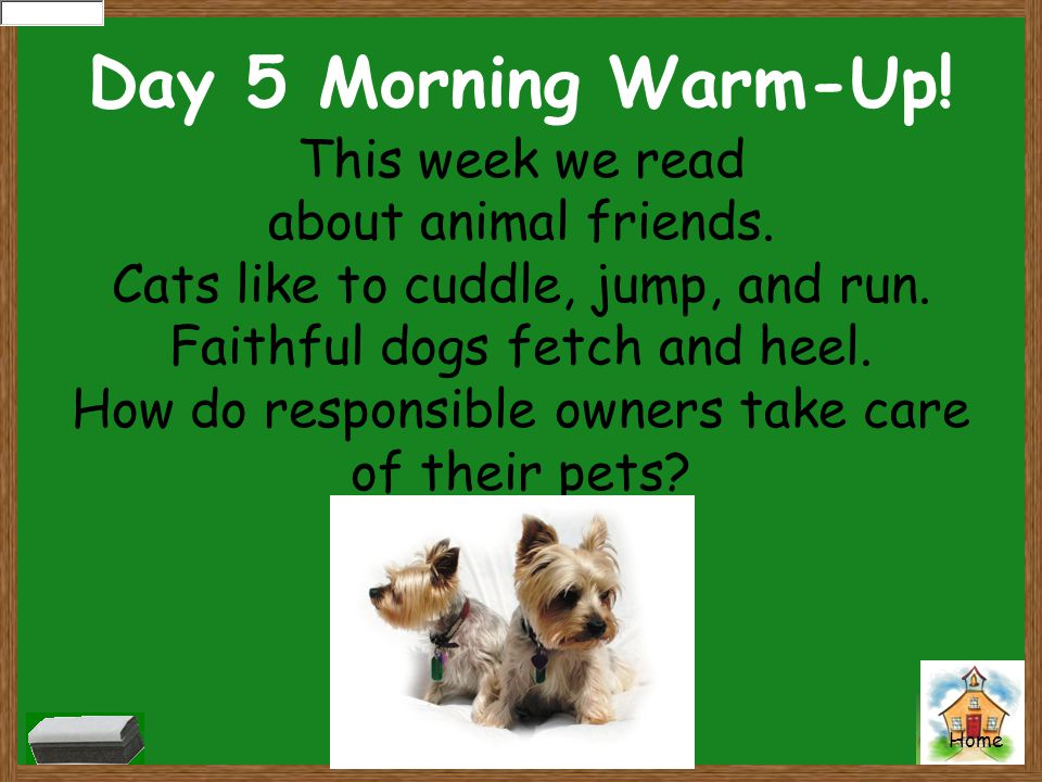 Day 5 Morning Warm-Up! This week we read about animal friends.