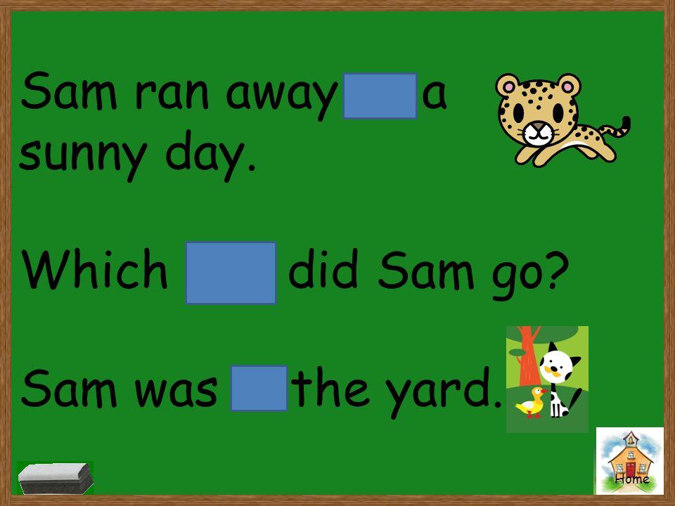 Sam ran away on a sunny day. Which way did Sam go Sam was in the yard.