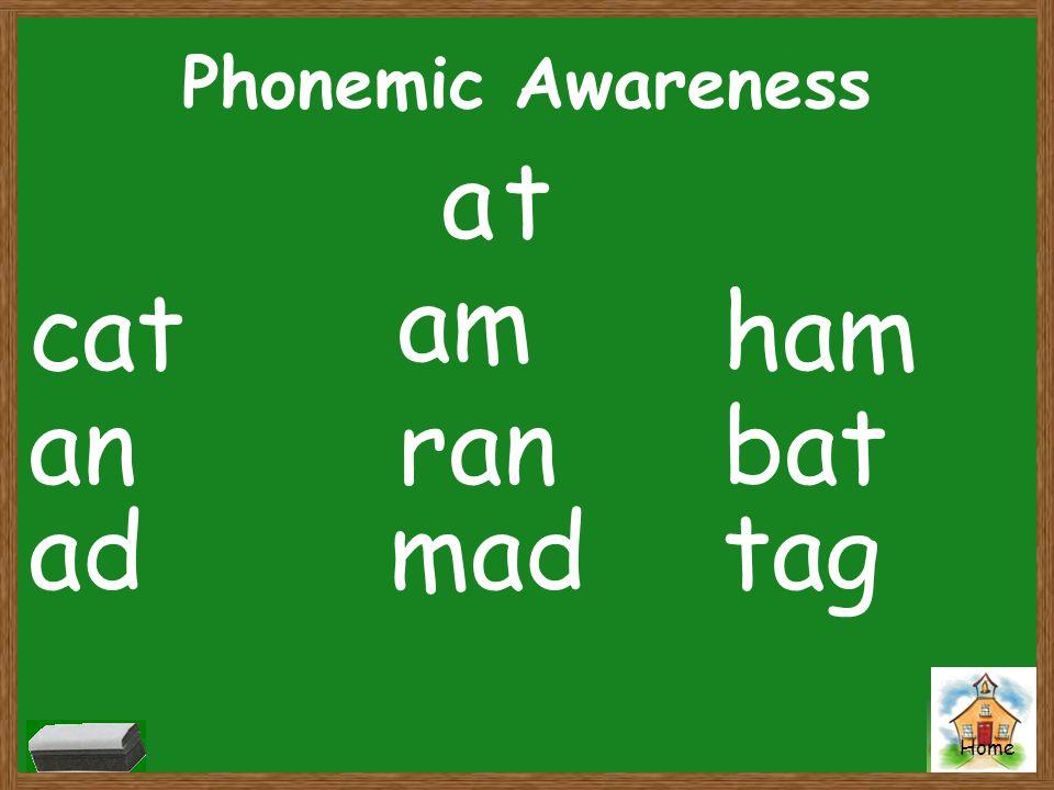 Phonemic Awareness a t am cat ham an ran bat ad mad tag