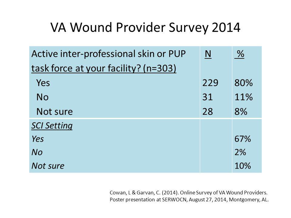 VA Wound Provider Survey 2014