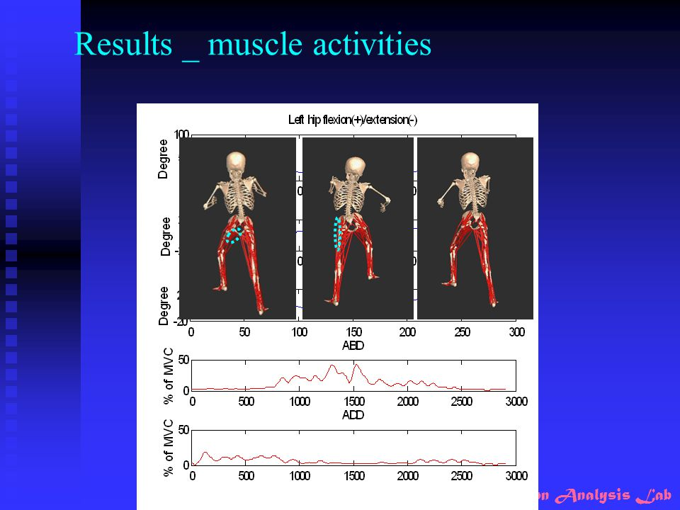 Results _ muscle activities