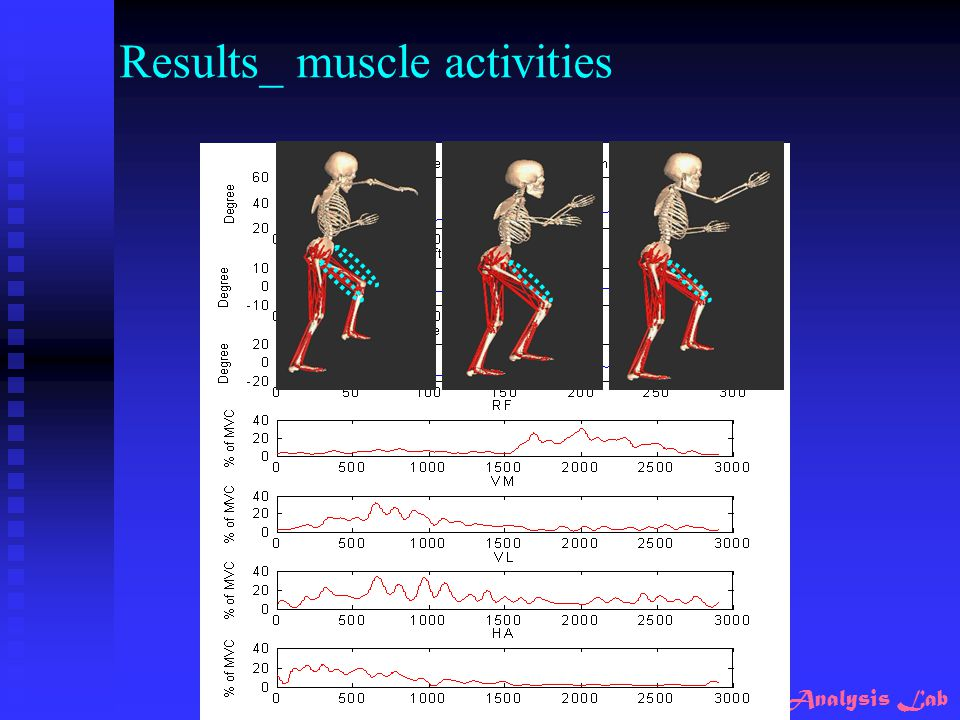 Results_ muscle activities