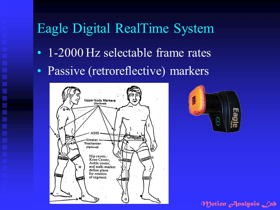 Eagle Digital RealTime System