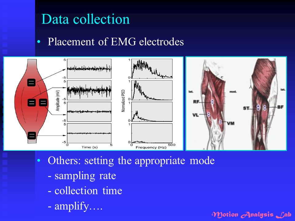 Data collection Placement of EMG electrodes