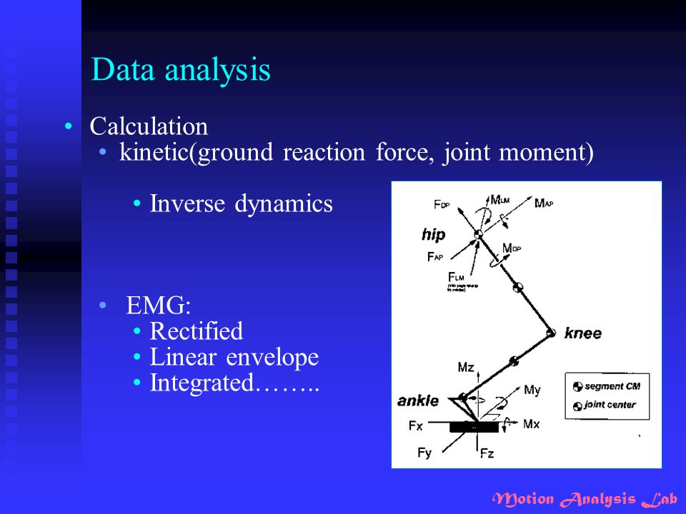 Data analysis Calculation kinetic(ground reaction force, joint moment)
