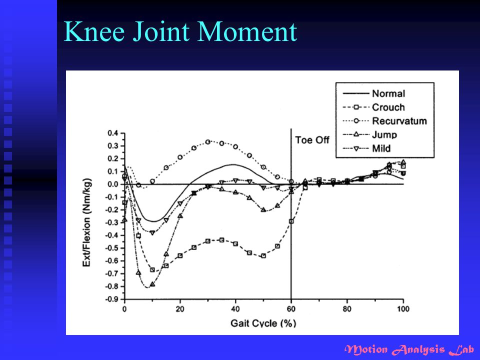 Knee Joint Moment