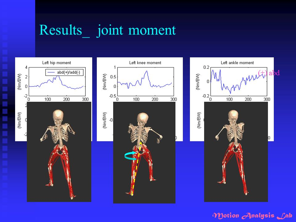 Results_ joint moment (+) abd