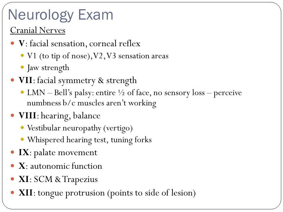 Neurology Exam Cranial Nerves V: facial sensation, corneal reflex