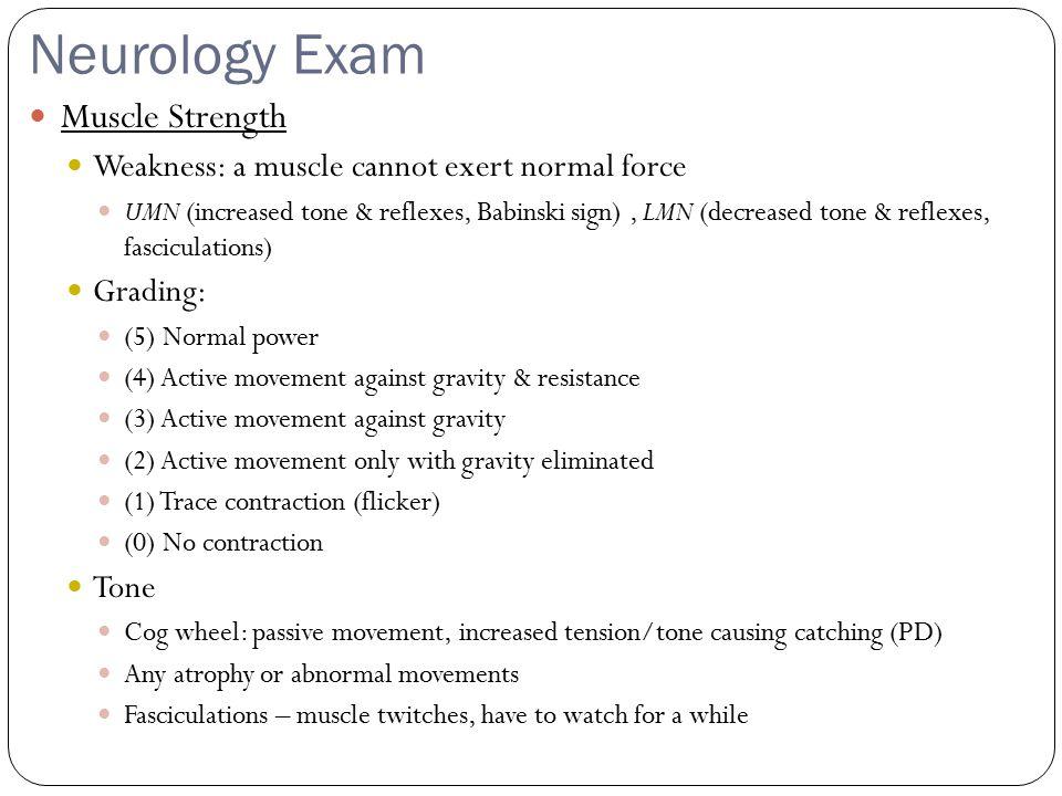 Neurology Exam Muscle Strength