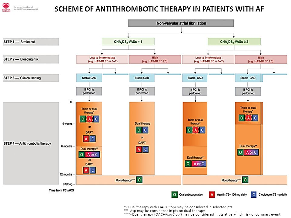 SCHEME OF ANTITHROMBOTIC THERAPY IN PATIENTS WITH AF