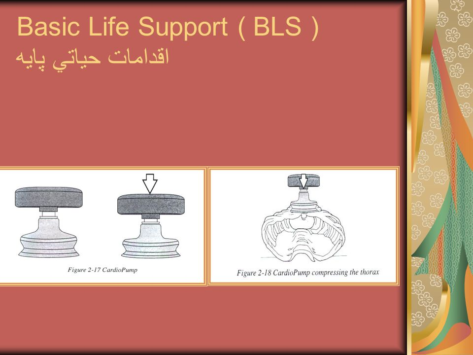Basic Life Support ( BLS ) اقدامات حياتي پايه
