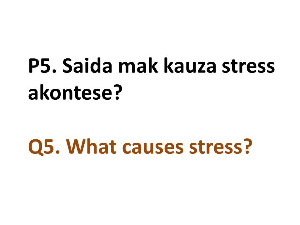 P5. Saida mak kauza stress akontese Q5. What causes stress