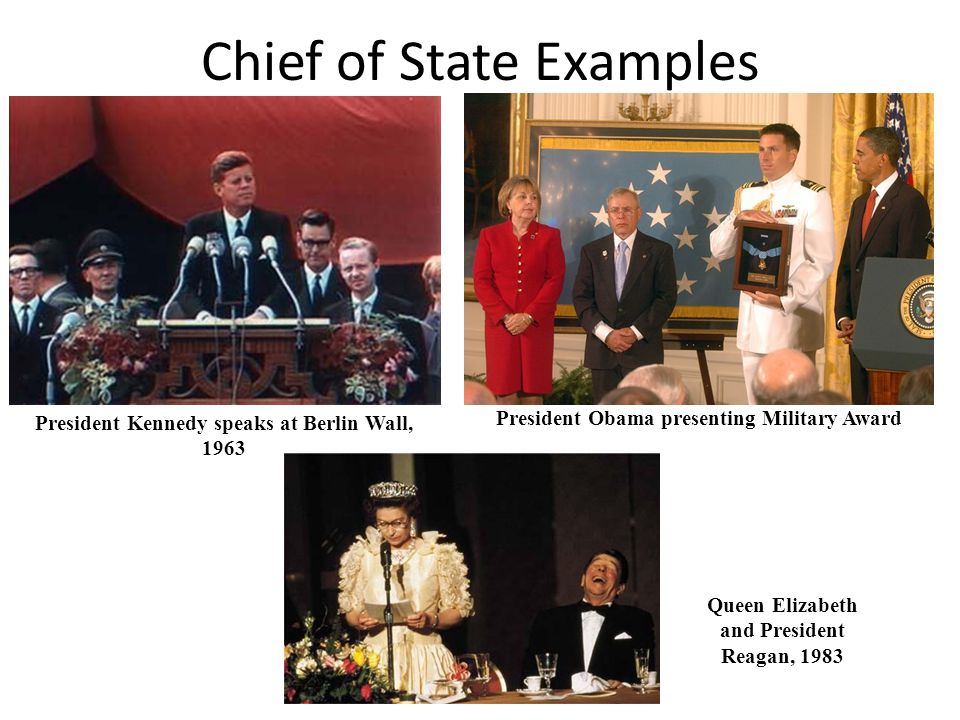 Chief of State Examples