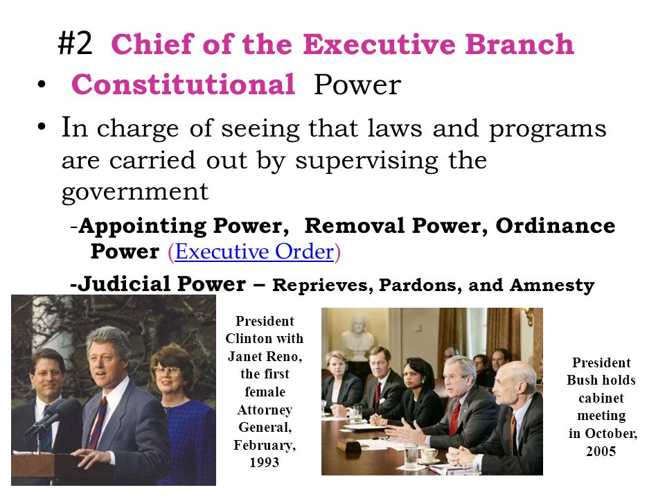 #2 Chief of the Executive Branch