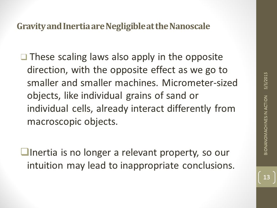 Gravity and Inertia are Negligible at the Nanoscale