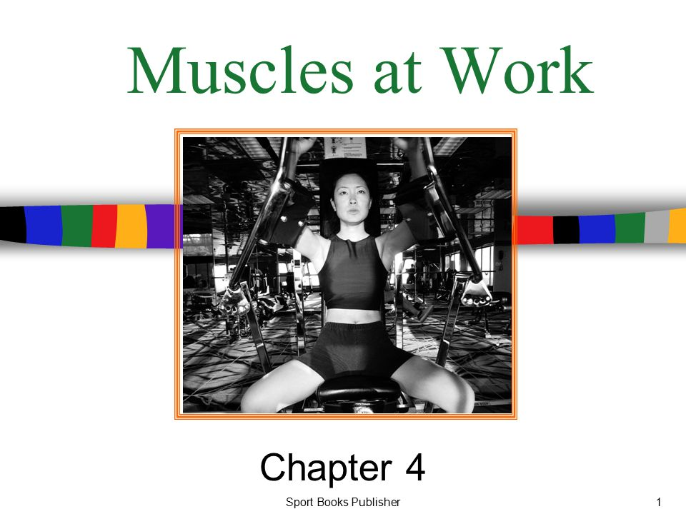 Muscles at Work Chapter 4 Sport Books Publisher