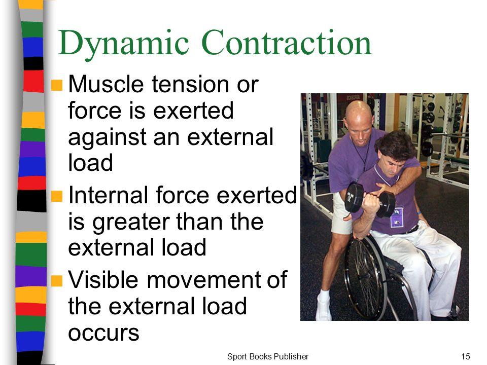 Dynamic Contraction Muscle tension or force is exerted against an external load. Internal force exerted is greater than the external load.