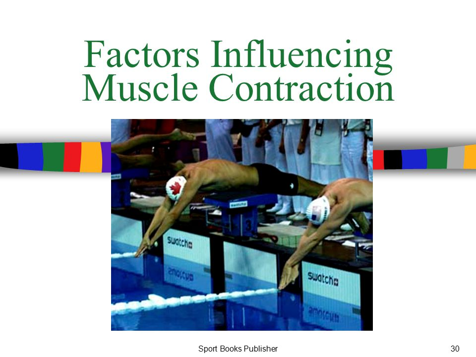 Factors Influencing Muscle Contraction