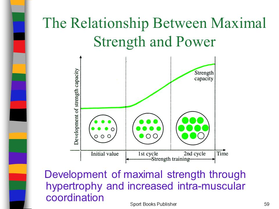 The Relationship Between Maximal Strength and Power