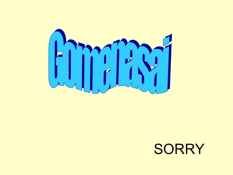 Gomenasai SORRY