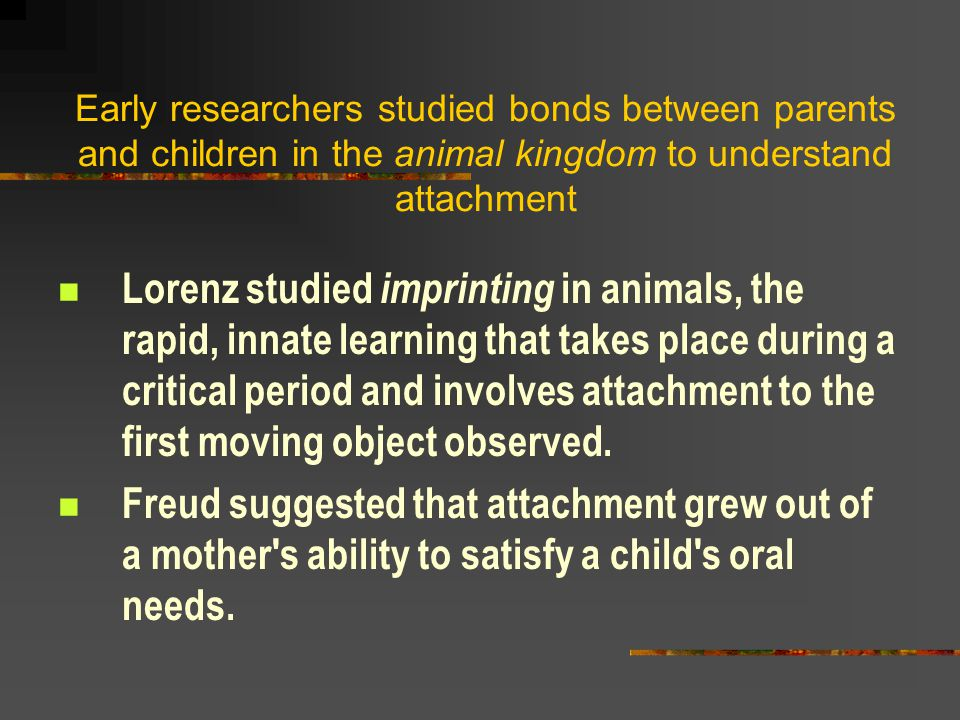 Early researchers studied bonds between parents and children in the animal kingdom to understand attachment