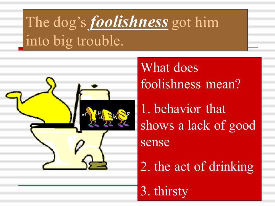 The dog's foolishness got him into big trouble.
