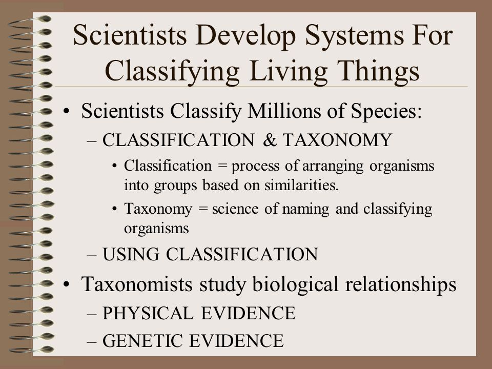 Scientists Develop Systems For Classifying Living Things