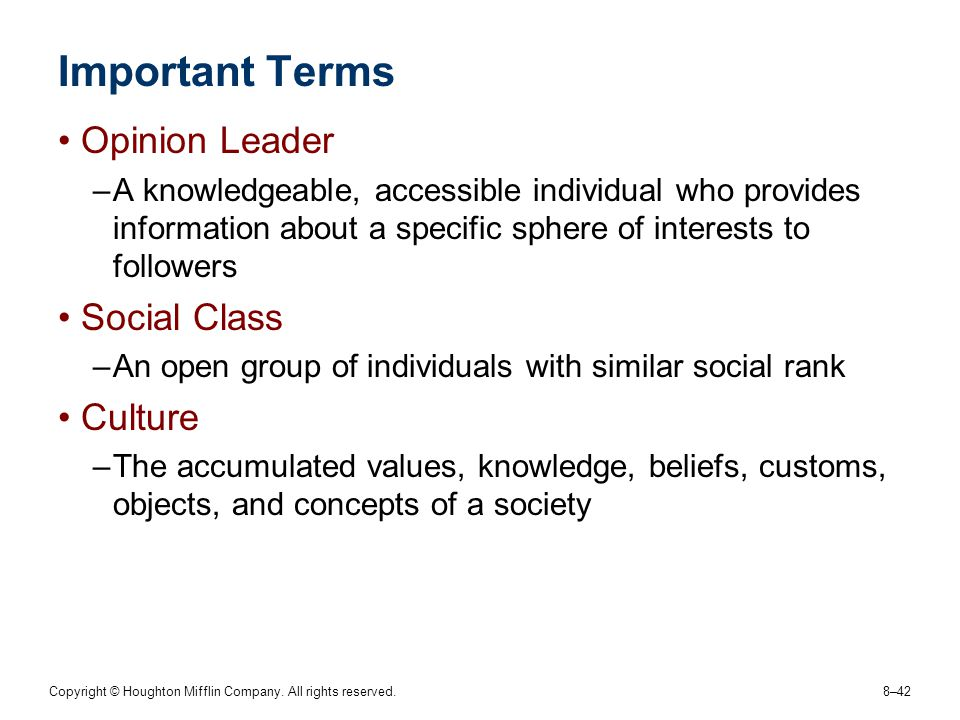Important Terms Opinion Leader Social Class Culture