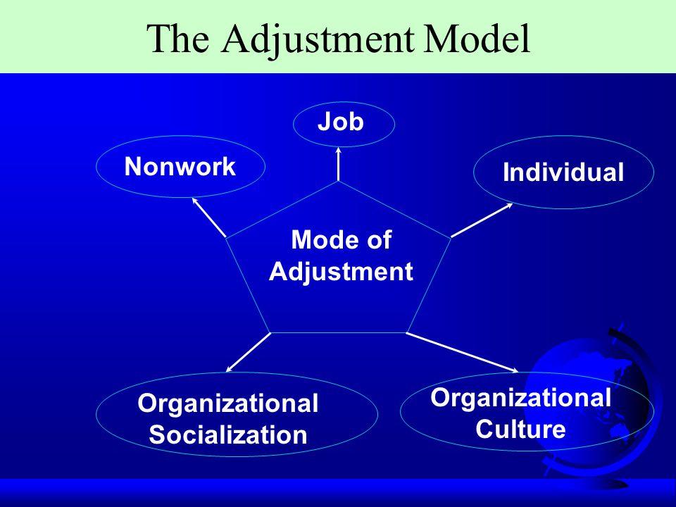 Organizational Culture Organizational Socialization