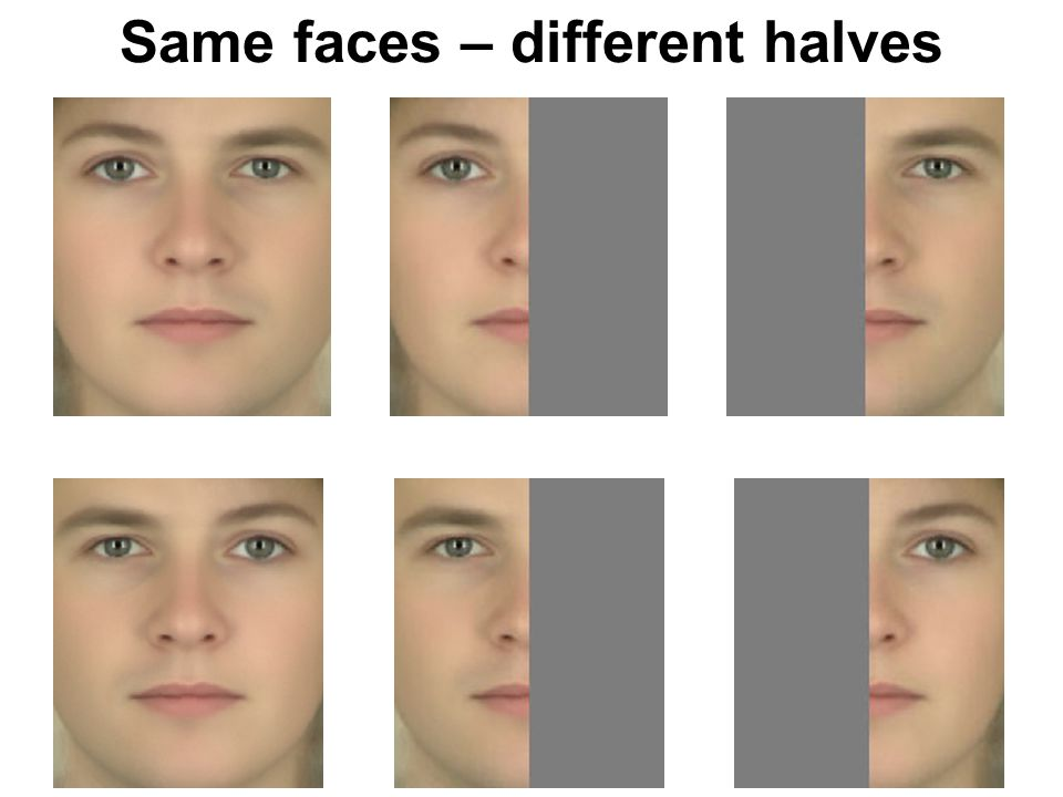 Same faces – different halves