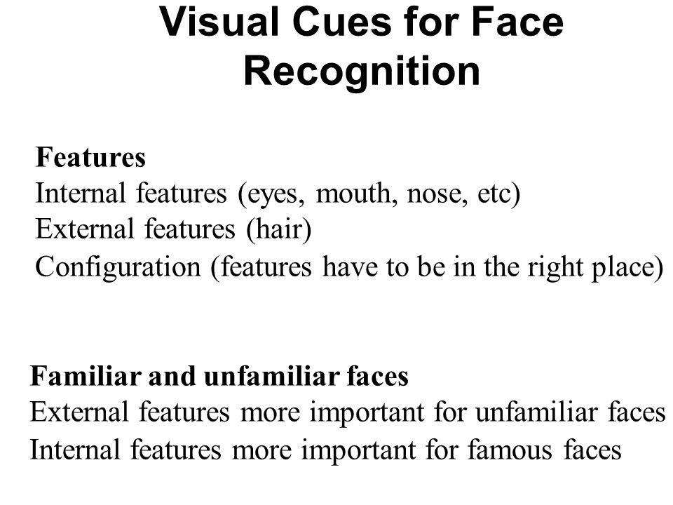 Visual Cues for Face Recognition