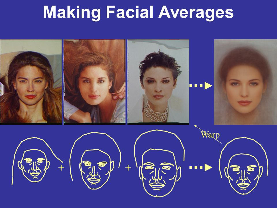 Making Facial Averages