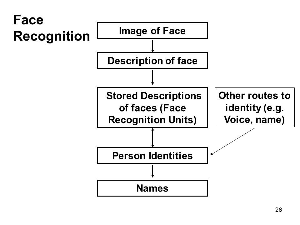 Face Recognition Image of Face Description of face