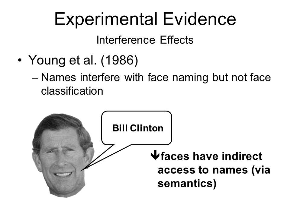Experimental Evidence Interference Effects