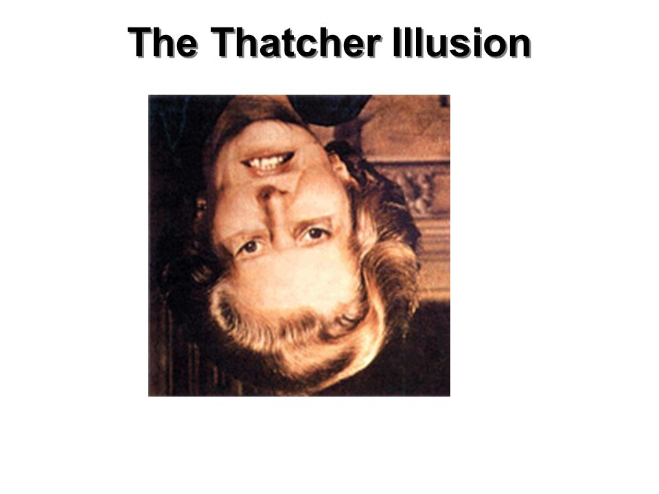 The Thatcher Illusion