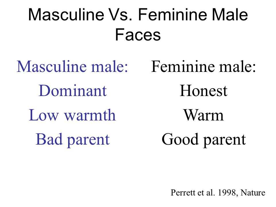 Masculine Vs. Feminine Male Faces
