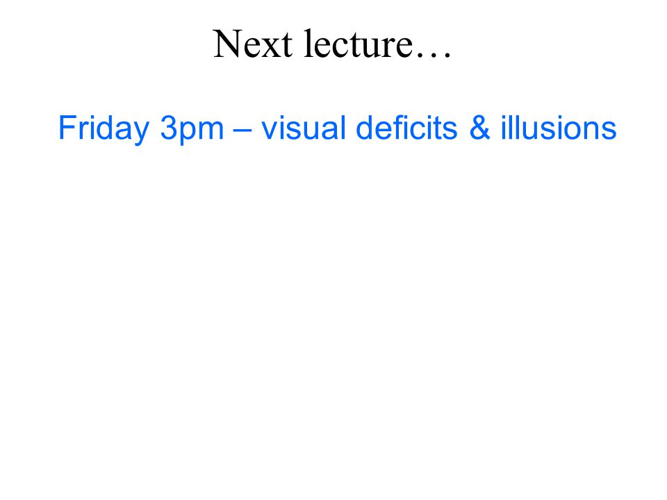 Friday 3pm – visual deficits & illusions