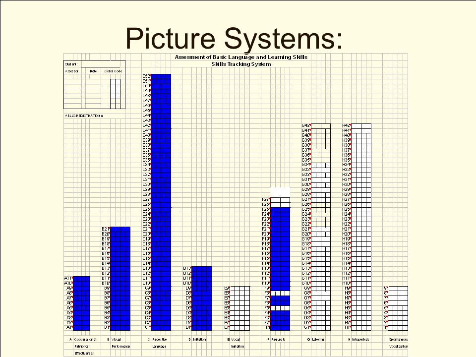 Picture Systems: