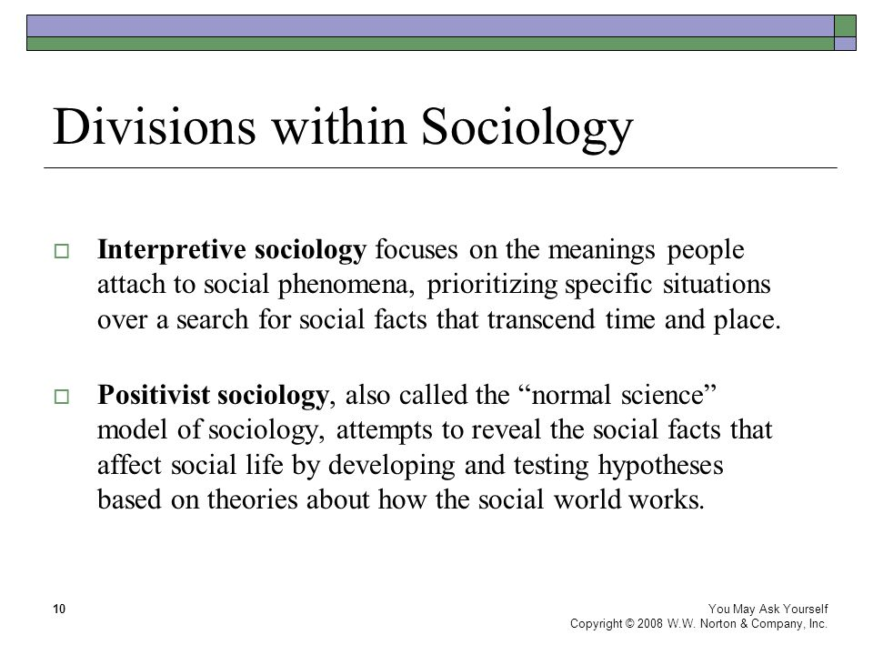 Divisions within Sociology