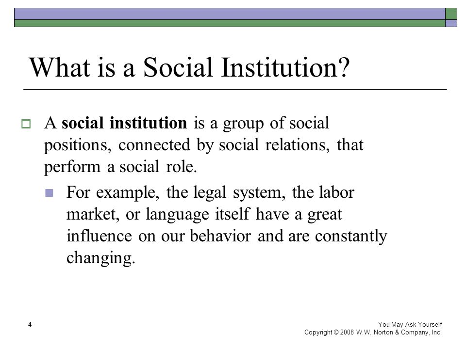 What is a Social Institution