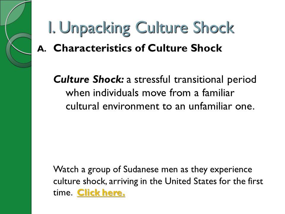 I. Unpacking Culture Shock