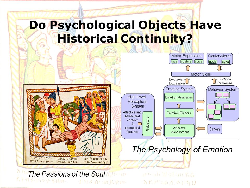 Do Psychological Objects Have Historical Continuity