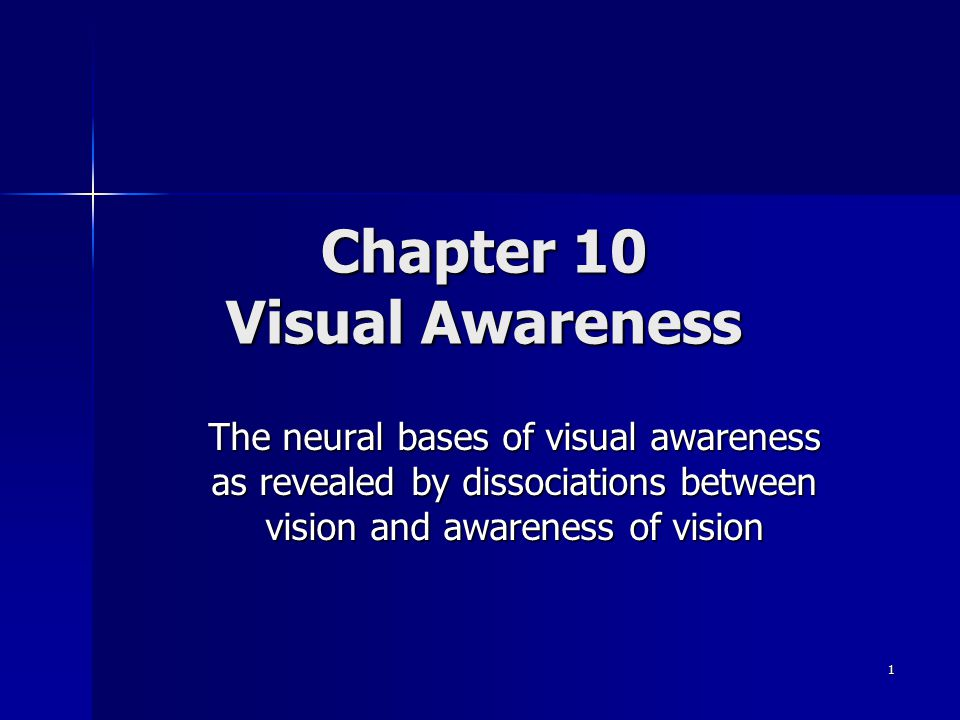 Chapter 10 Visual Awareness