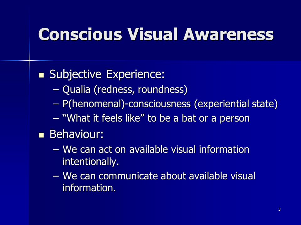 Conscious Visual Awareness