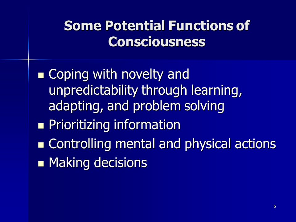 Some Potential Functions of Consciousness