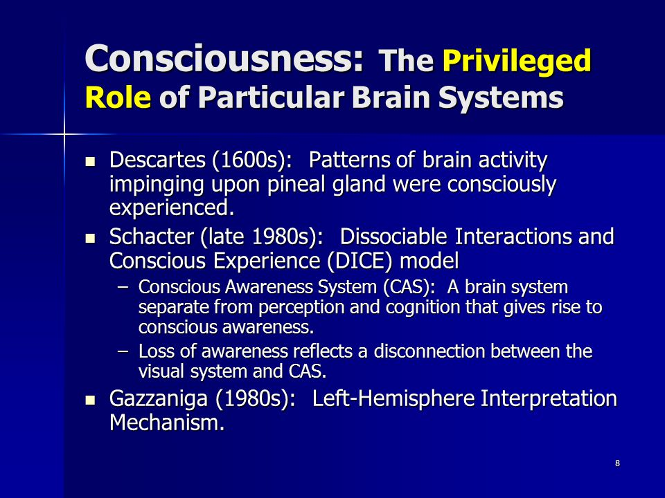 Consciousness: The Privileged Role of Particular Brain Systems