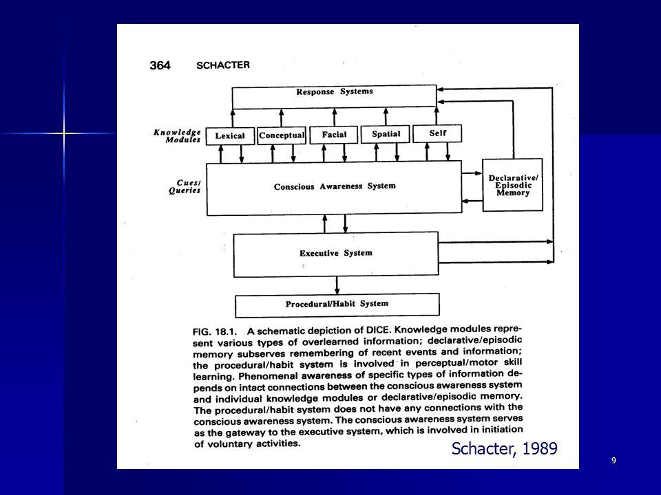 Schacter, 1989