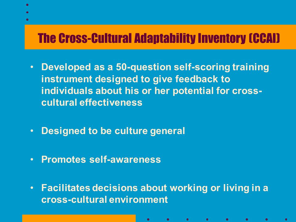 The Cross-Cultural Adaptability Inventory (CCAI)