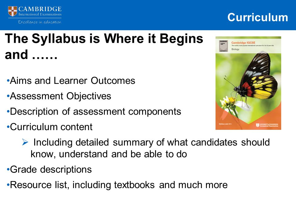 The Syllabus is Where it Begins and ……