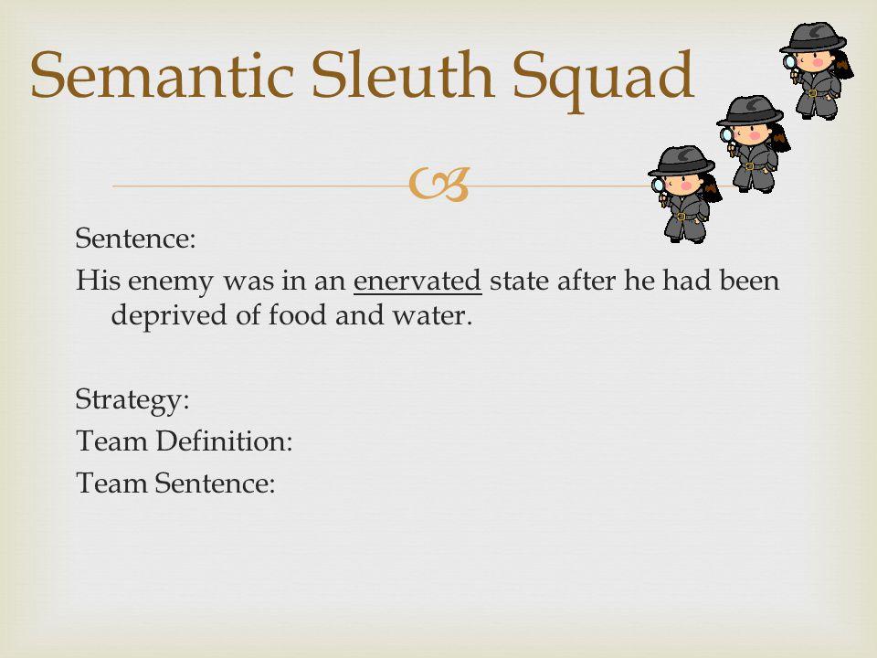 Semantic Sleuth Squad